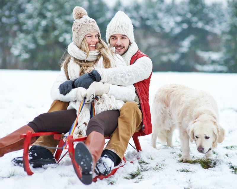夫妇sledding与狗在冬天 免版税图库摄影