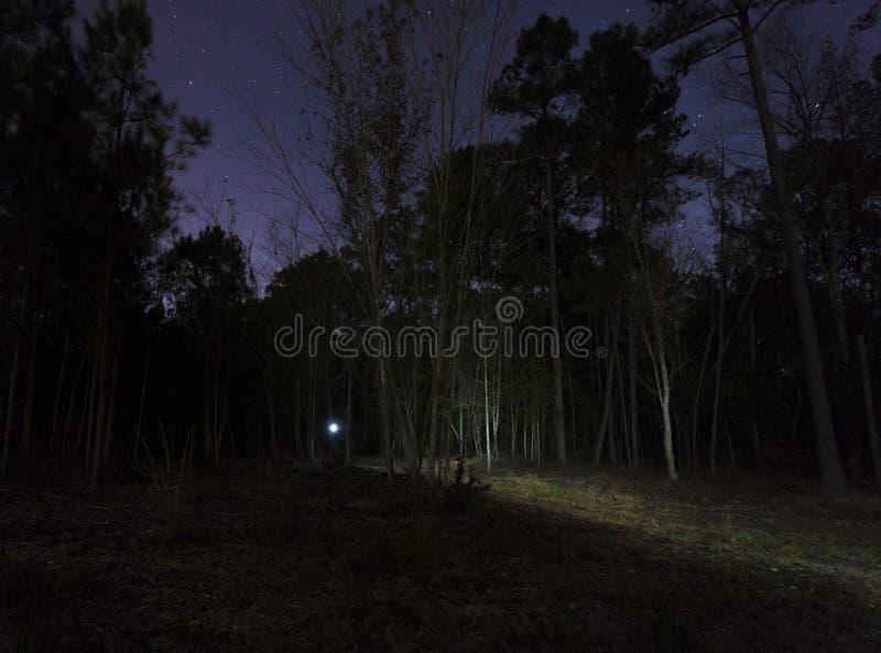 失去的远足者在晚上 库存照片