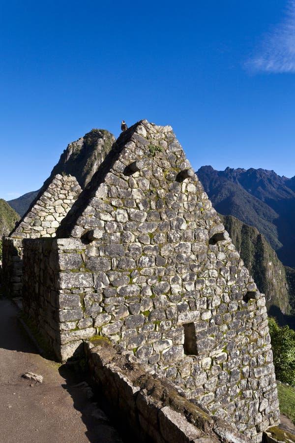 失去的印加人城市马丘比丘的废墟在秘鲁-南美 免版税库存图片