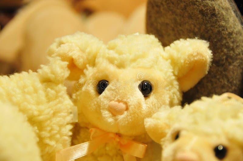 Download 失去的绵羊 库存照片. 图片 包括有 损失, 羊毛, 绵羊, 工艺, 虚拟, 传统, 长毛绒, 玩具, 黄色 - 72357782