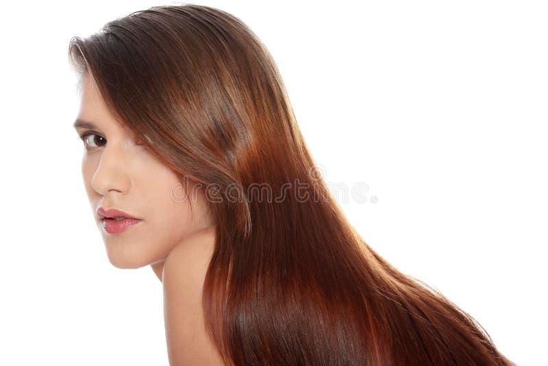 头发健康长的妇女 库存图片