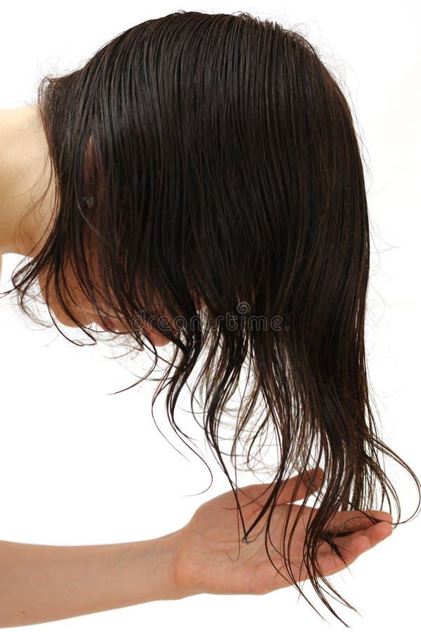头发她的藏品湿妇女年轻人 库存照片
