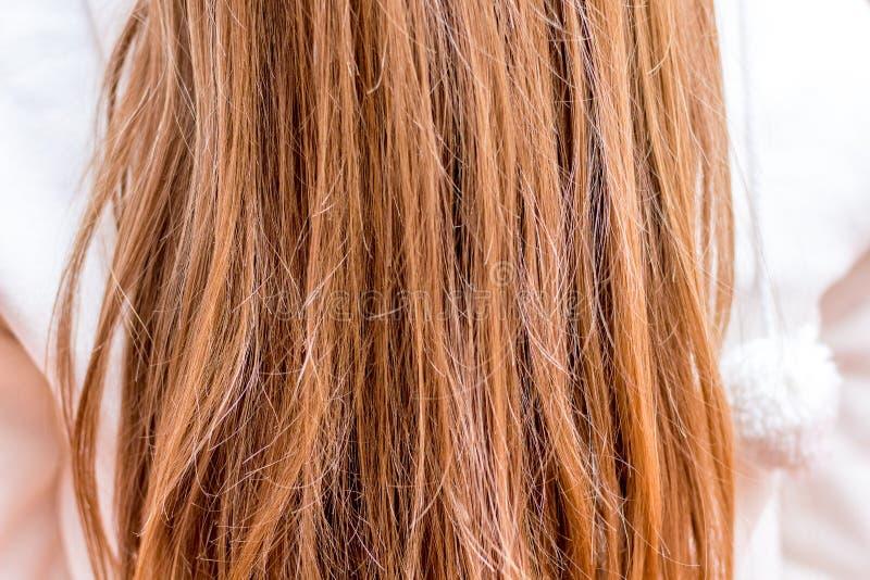 头发是需要关心的妇女 hair_纹理  库存照片