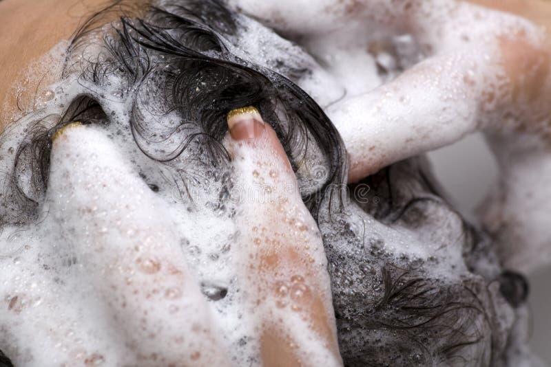 头发洗涤 免版税库存图片