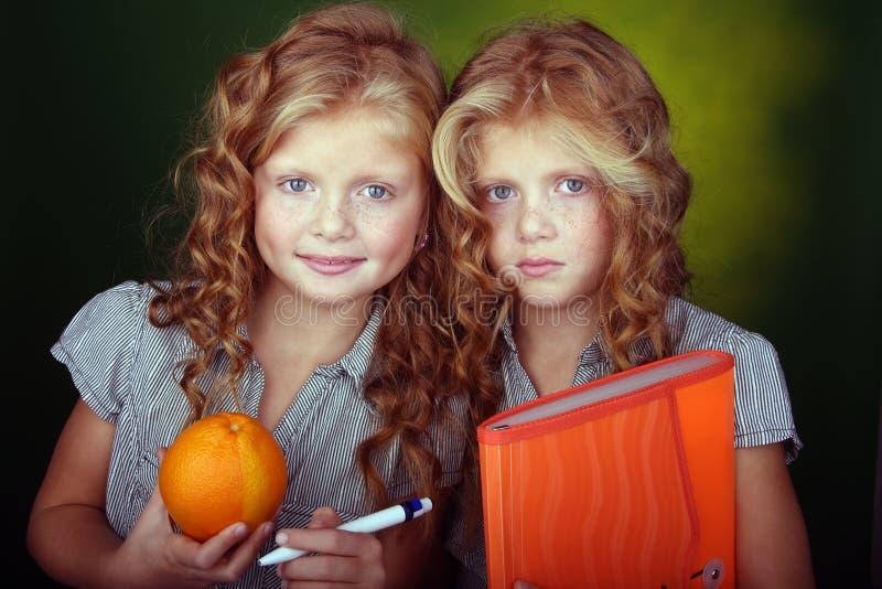 头发纵向红色姐妹 免版税库存照片