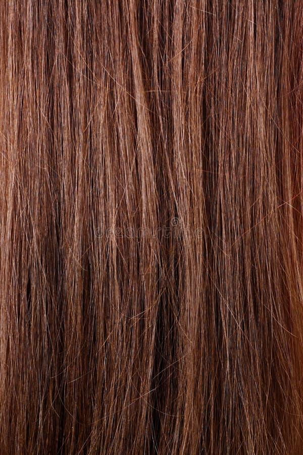 头发纹理 库存照片