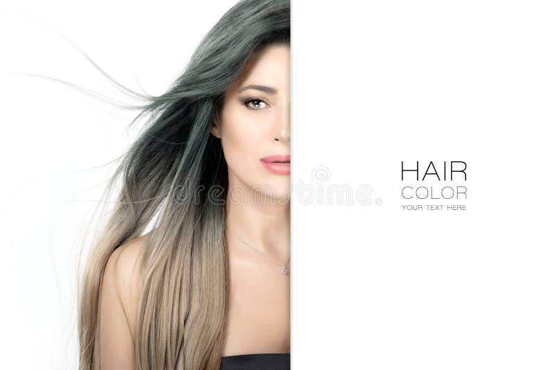 头发颜色秀丽概念横幅 免版税库存图片