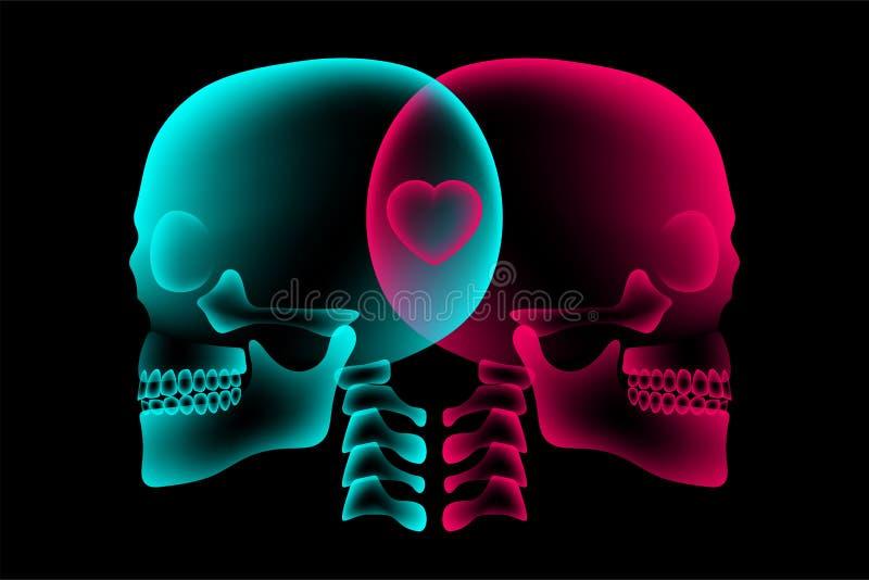 头骨与心脏标志,爱构思设计,侧视图例证的夫妇X-射线 皇族释放例证