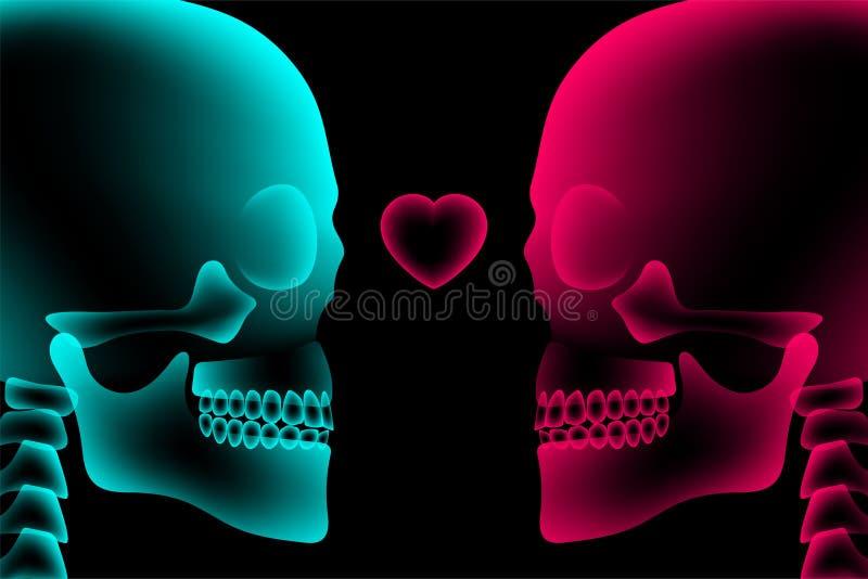 头骨与心脏标志,爱构思设计,侧视图例证的夫妇X-射线 向量例证