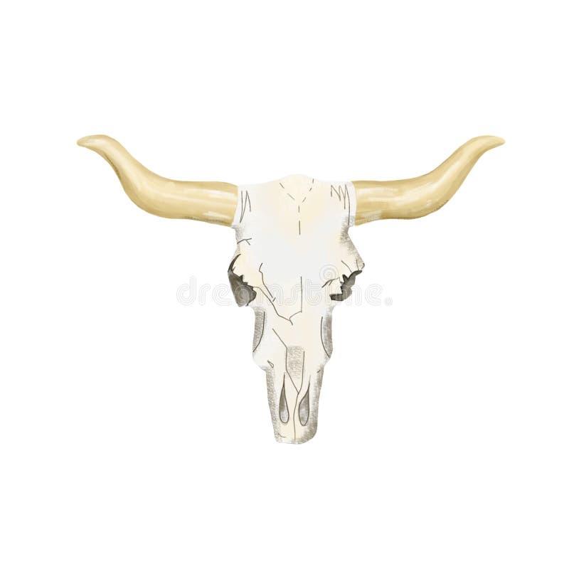 头骨数字式艺术骨头母牛头部族公牛黄牛支柱小牛boho样式例证几何在白色背景 库存例证