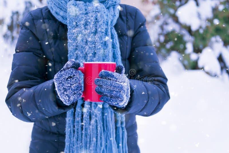 夹克和围巾外部藏品温暖的饮料的妇女 库存图片