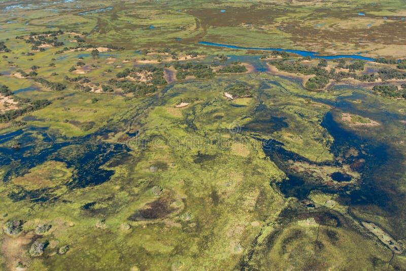夺取豪华的植被、水和土地奥卡万戈三角洲的,博茨瓦纳的打旋的样式一张鸟瞰图 免版税库存图片