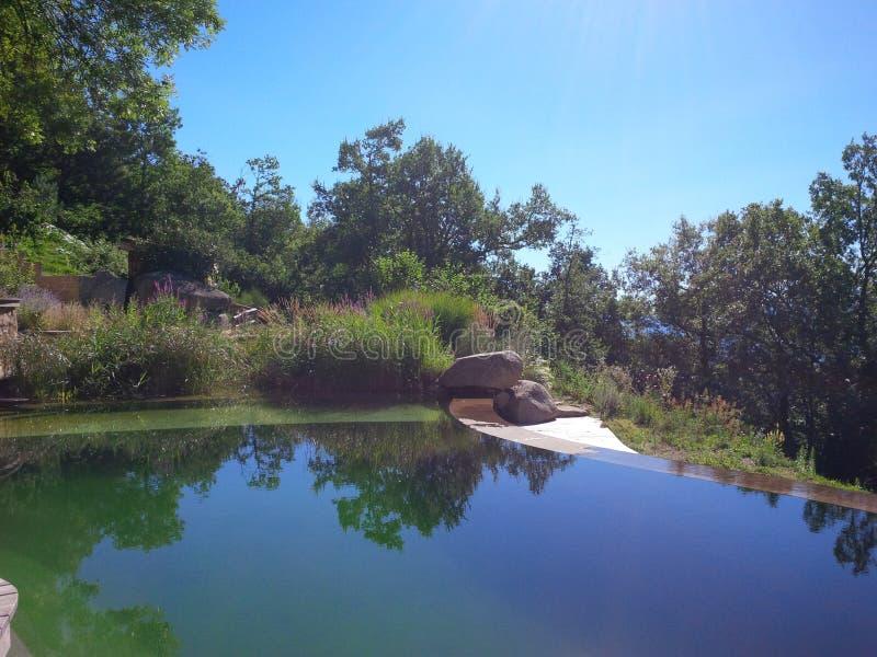 奇妙游泳池塘 库存照片