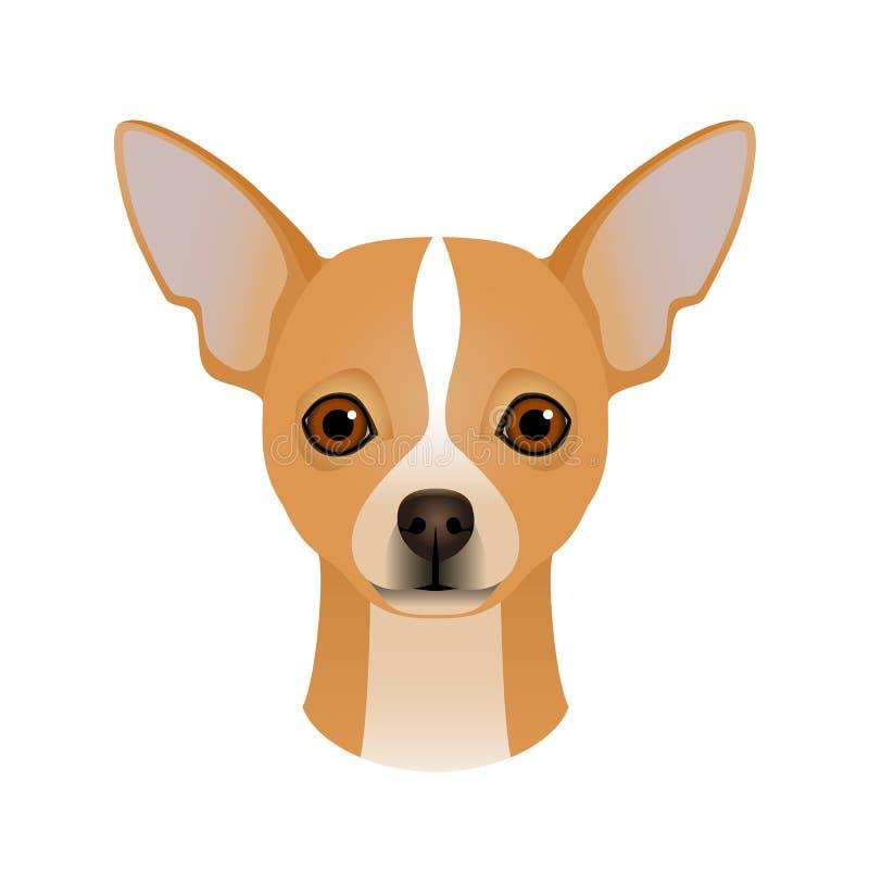 奇瓦瓦狗的被隔绝的五颜六色的头和面孔在白色背景的 颜色平的动画片品种狗画象 皇族释放例证