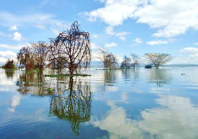 奈瓦沙湖风景视图  库存照片