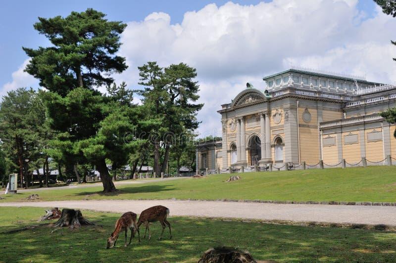 奈良国家博物馆 图库摄影
