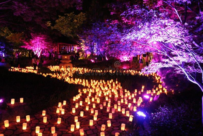 奈良节日Lennox庭院 免版税图库摄影