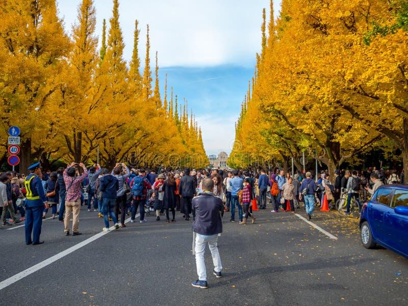 奈良,日本- 2017年7月26日:拍照片和享受美好的秋天风景的看法的未认出的人民 免版税图库摄影