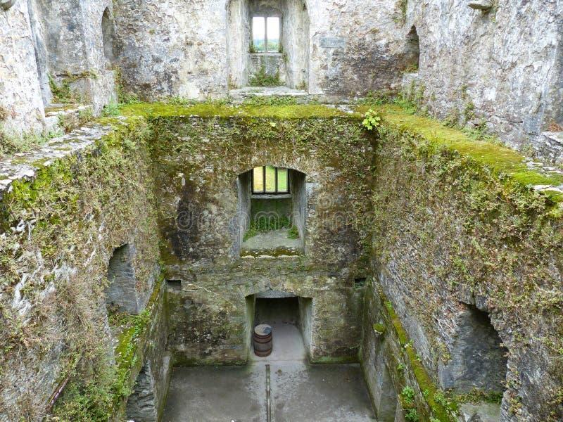 奉承城堡奉承黄柏爱尔兰 库存图片