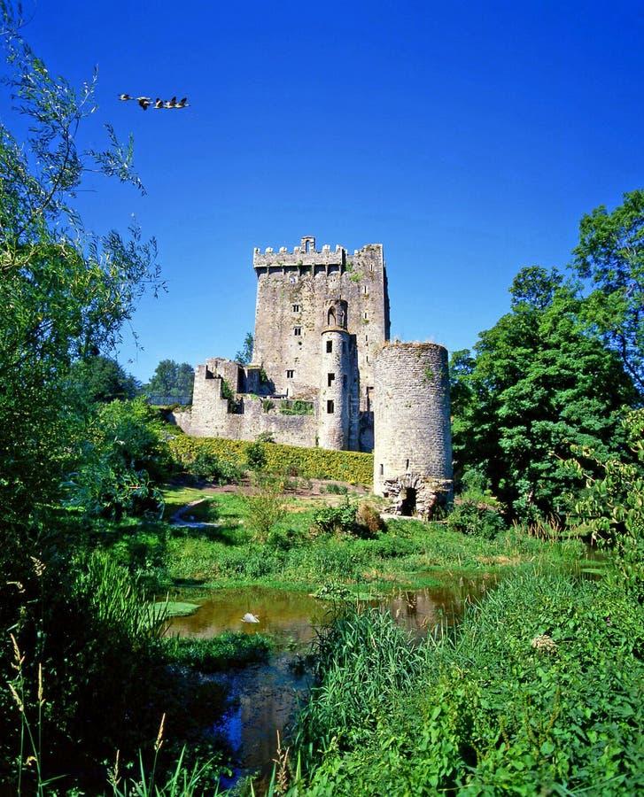 奉承城堡黄柏,爱尔兰 免版税图库摄影