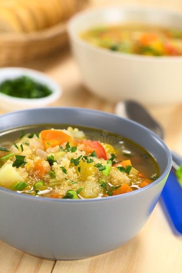 奎奴亚藜和蔬菜汤 免版税库存照片