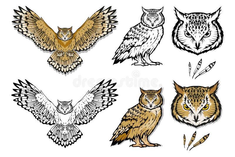 套不同的猫头鹰 猫头鹰商标 狂放鸟画 顶头例证猫头鹰向量 皇族释放例证