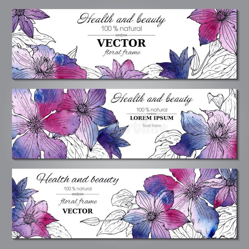 套与美丽的铁线莲属的三副水平的横幅开花 库存例证