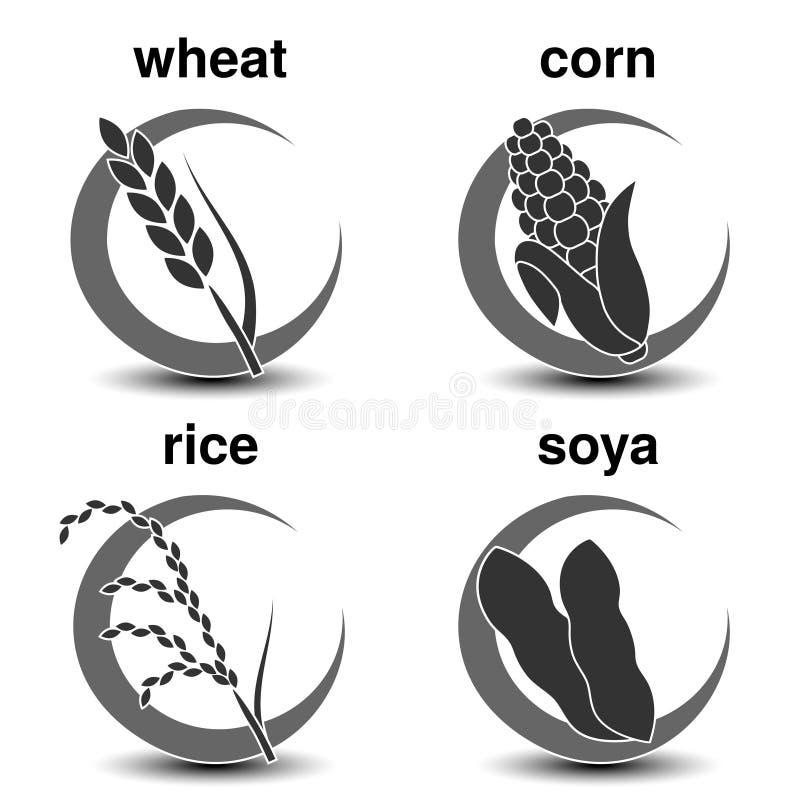 套与经济庄稼的深灰圆标志 谷物象-麦子,玉米,米,大豆 库存例证
