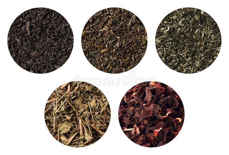 套五不同茶纹理 darjeeling的黑色、突围、绿色和carcade 库存照片