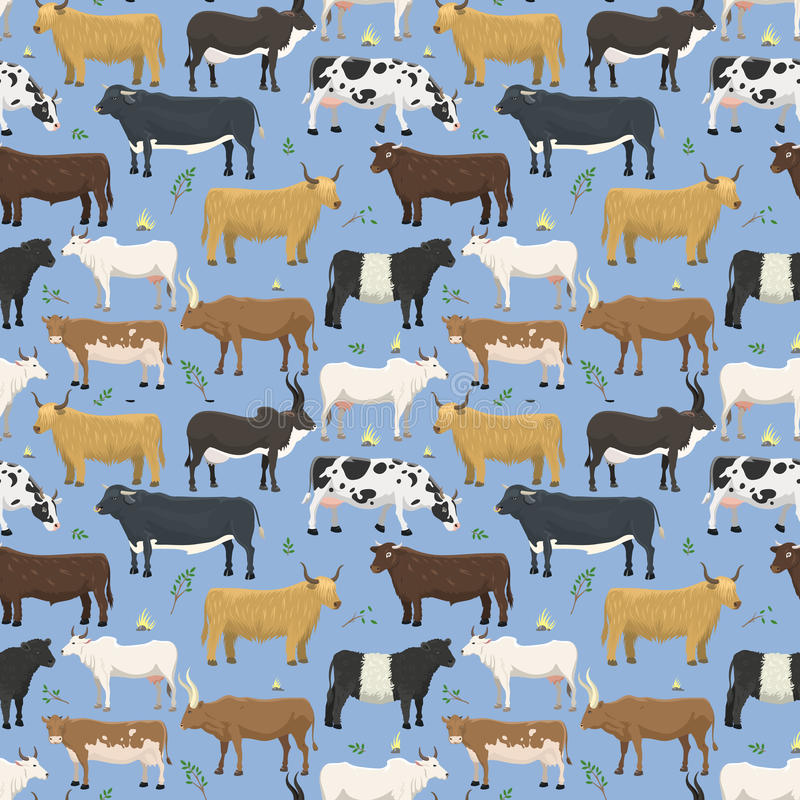 套公牛和母牛牲口牛哺乳动物的自然发牢骚国内水牛字符传染媒介无缝的样式 向量例证