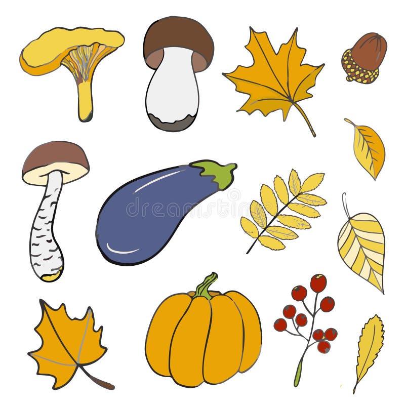 套关于秋天的手拉的乱画元素 蘑菇,叶子,南瓜,茄子,橡子 得出花卉草向量的背景 皇族释放例证