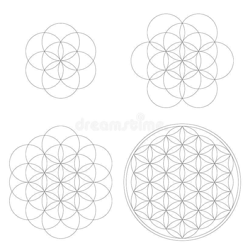 套几何元素和形状 生活发展神圣的几何花  库存例证