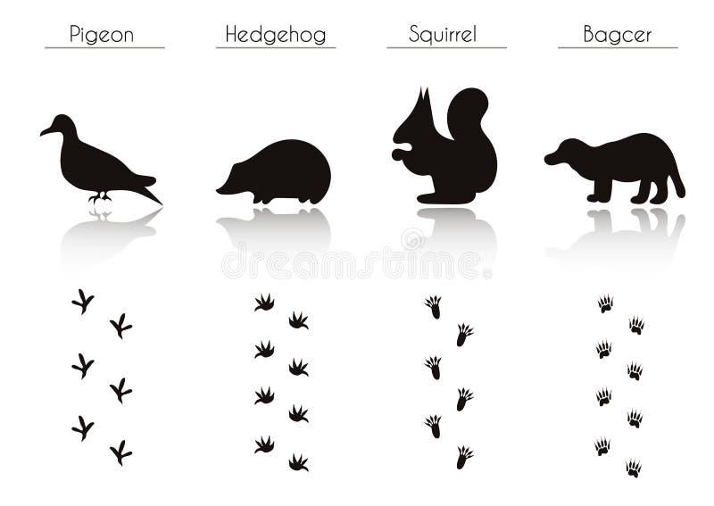 套动物和鸟落后与名字 向量例证