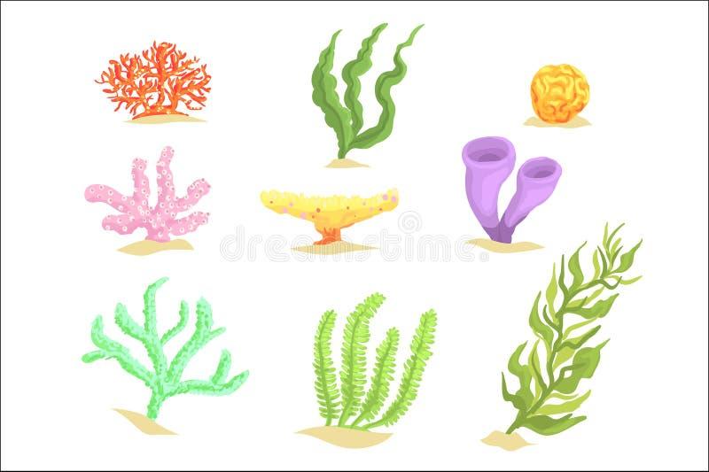 套动画片水下的植物,海草和水生海洋海藻导航例证 皇族释放例证