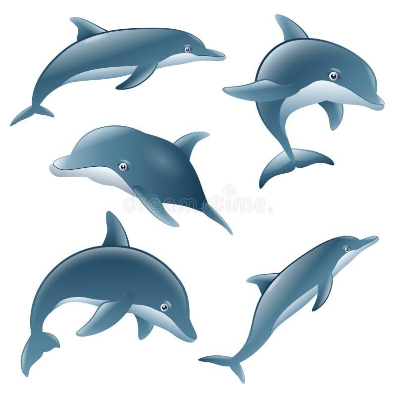 套动画片海豚 库存例证