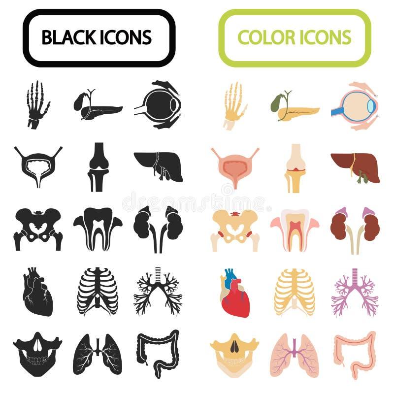 套十六个人体器官和解剖零件颜色和黑平的象 库存例证