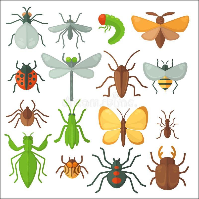 套各种各样的昆虫:蝴蝶、飞行、甲虫、蜻蜓、蜘蛛、蜂和瓢虫 皇族释放例证