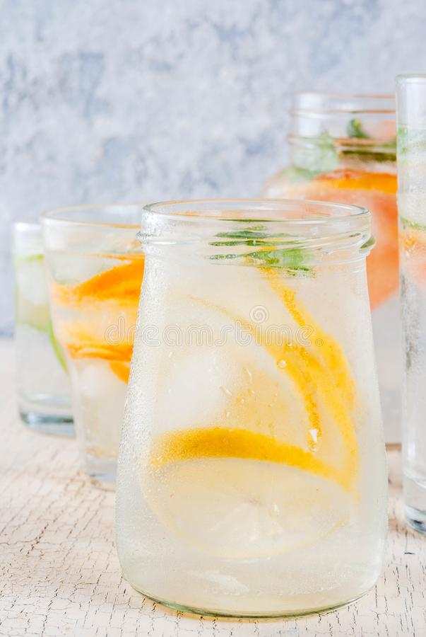套各种各样的柑橘drinka 免版税库存照片