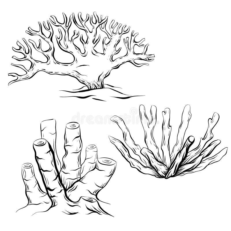 套各种各样的黑白等高动画片珊瑚 对象是分别于背景 向量例证
