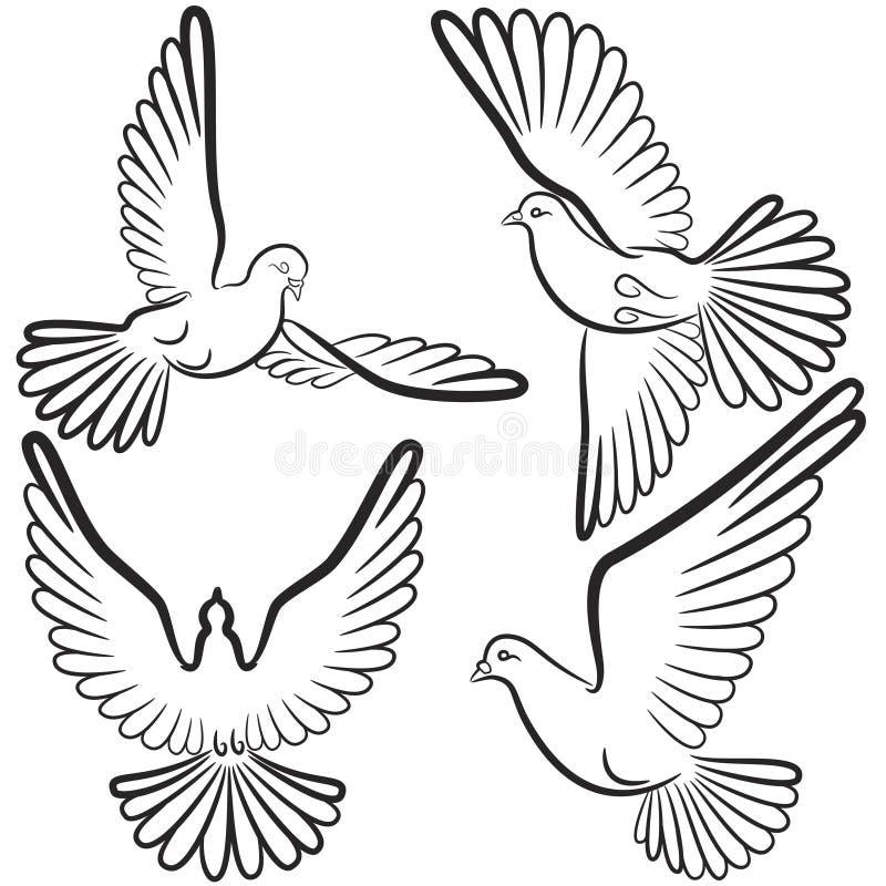 套四只鸽子黑白等高  库存例证