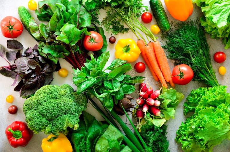套在灰色背景的新鲜蔬菜 芳香草本,葱,鲕梨,硬花甘蓝,胡椒响铃,茄子,圆白菜 图库摄影