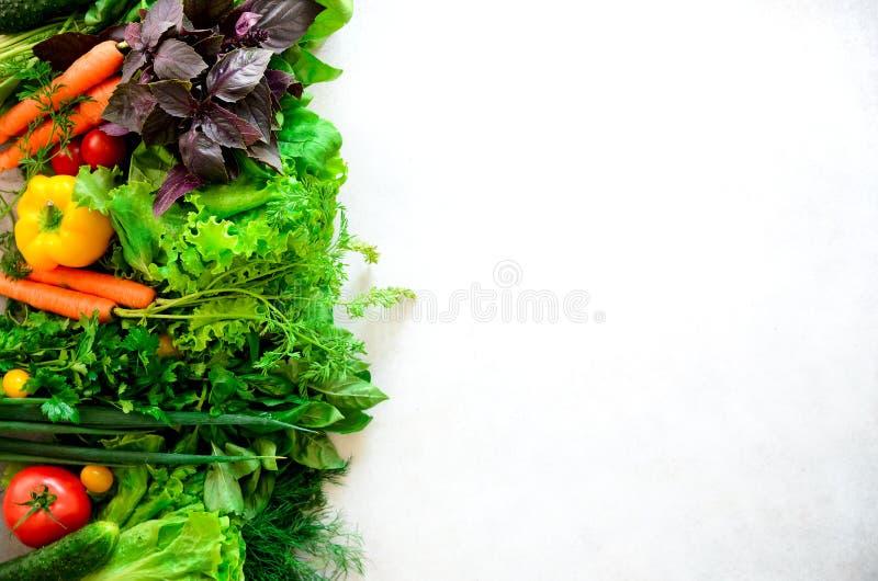 套在白色背景的新鲜蔬菜 芳香草本,葱,鲕梨,硬花甘蓝,胡椒响铃,茄子,圆白菜 图库摄影