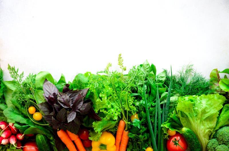 套在白色背景的新鲜蔬菜 芳香草本,葱,鲕梨,硬花甘蓝,胡椒响铃,茄子,圆白菜 免版税图库摄影