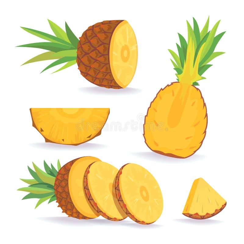 套在白色背景的菠萝切片 新鲜的自然果子 向量例证