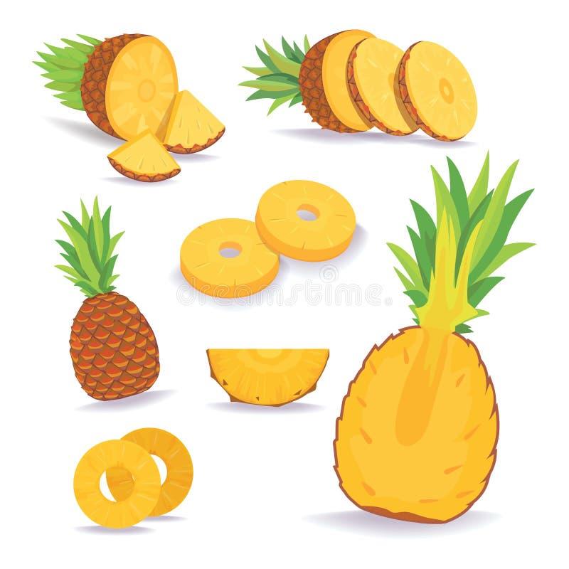 套在白色背景隔绝的菠萝切片 新鲜的自然果子 库存例证