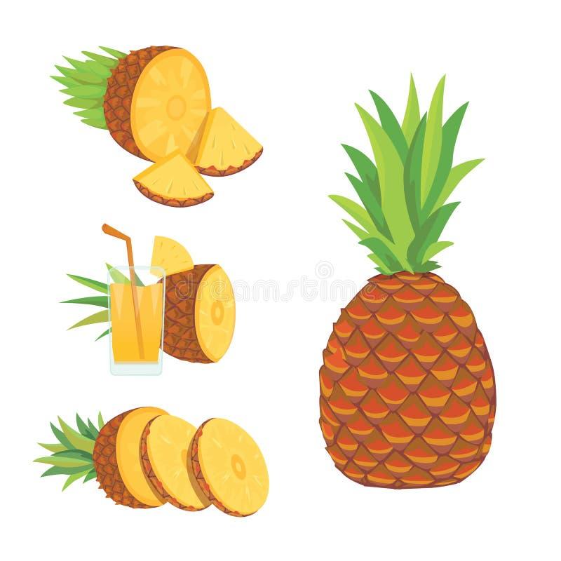 套在白色背景隔绝的菠萝切片 新鲜的自然果子 向量例证