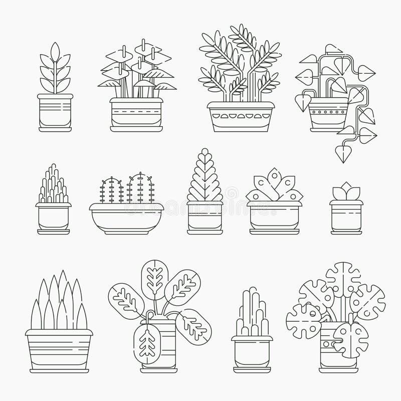 套在线设计,编辑可能的冲程的室内植物象 在被隔绝的花盆的各种各样的植物收藏 室内 向量例证