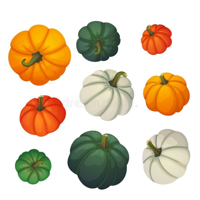 套多彩多姿的南瓜 秋天,收获,感恩,万圣夜象 向量例证