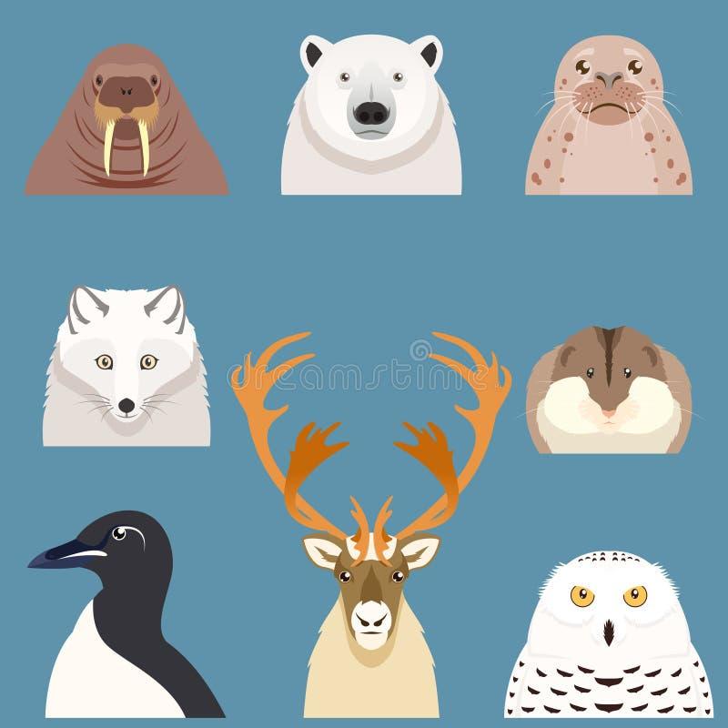 套平的北极动物象 库存例证
