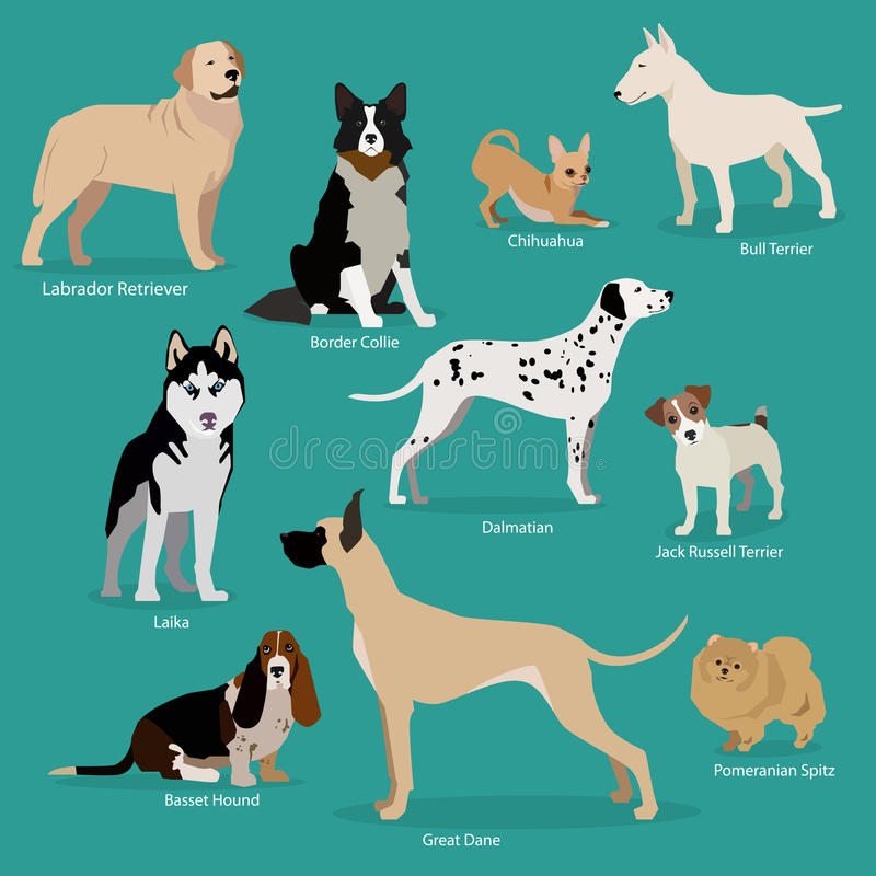 套平的开会或走的逗人喜爱的动画片狗 库存例证